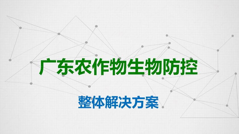 """""""广东农作物生物防控""""商业计划书"""